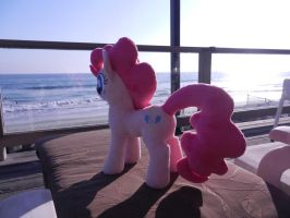 Just checking the beach out by EquestriaPlush