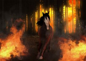 Deadland: Horse by Karew