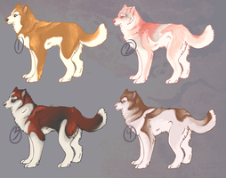 Blue eyed Huskies! {FOR SALE} now for Points! by Ticklebutt