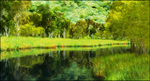 Deciduous Forest and Stream by jbjdesigns