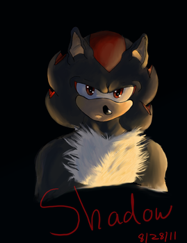 Shadow the hedgehog by o-Muzic4Life-o