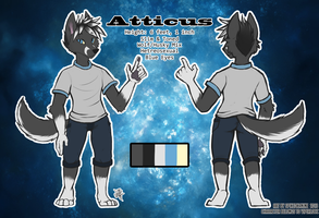 Atticus Reference! by SpikedKanine