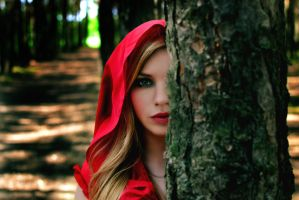 Little Red Riding Hood 5 by ThePastMoment