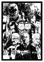 The Dark Knight Rises by annb