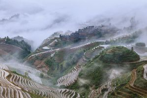 Longsheng rice terrace 2 by scholl