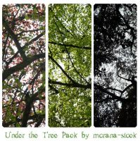 Under the Tree Pack by morana-stock