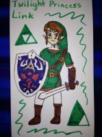Twilight Princess: Link by airbornewife71