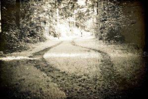 take the road as it comes by tommboy