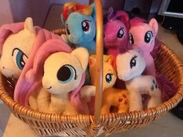 Ponybasket by WhiscashGirl