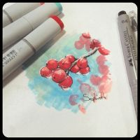 Red Currants by Sephiroth-Art