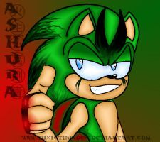 Ashura the Hedgehog by ToxicThunder