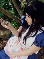 American Mcgee's Alice IV by julialorenzutti