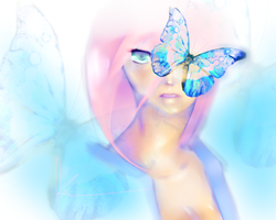 Butterfly vision by Mikanpen