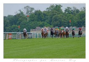 Horse Race - 015 by laurentroy