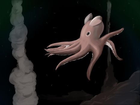Grimpoteuthis Bathynectes by Candy-Rainbows