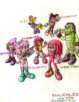 Knuckles and the Chaotix by SagaHanson25