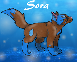 Sora the water cat by SuperSonicFireDragon