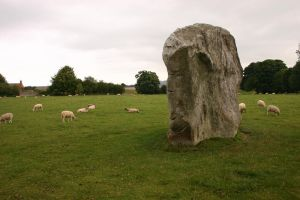 Avebury Stone and Sheep by FoxStox