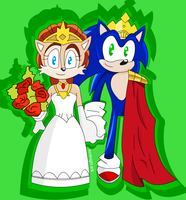 Sonic and Sally - Wedding day by evolvd-studios
