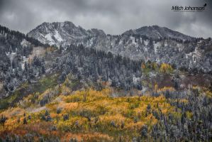 Blanket of Autumn Colors HDR by mjohanson