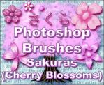 PS Brushes - Sakuras Updated by sakura13