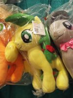 ( MLP ) Apple Fritter OnlyFactory Plush at MCCC by KrazyKari