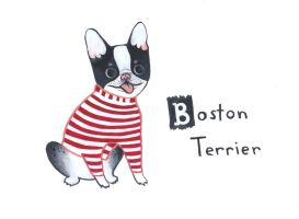 Boston Terrier by nekofoot
