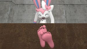 Sylveon's soles 5 (request) by hectorlongshot