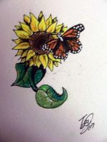 Tattoo: butterfly on sunflower by Nonnyarie