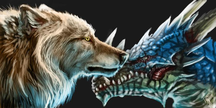 a wolf and a dragon by Decadia
