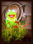 Kermit 4 by crimsonravenwarrior