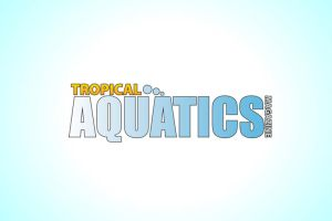 Tropical Aquatics Magazine by Gierka-Design