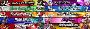 Sonic and friends banner by cripps