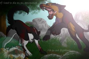 Swiftpaw's final stand-Redone by MoonTiger456