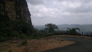 Panchmadhi Jungle 6 by sds49in