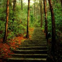 Stairways to heaven by CathyDong