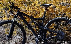 My 29er Against the Fall Colors by ClymberPaddler