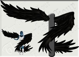 Wrap-Around Wings - Black by Thy-Darkest-Hour