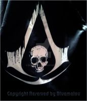 My  collection  Assassin's Creed 4 Black Flag by blueMALOU