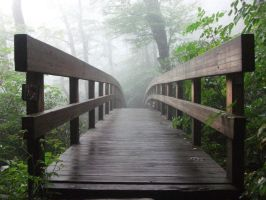 The Misty Bridge by CannibalCat