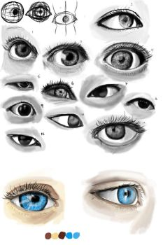 Eye study for school ^_^ by VeryHapppyPanda