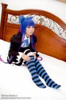 Stocking 02 by Hitomi-Cosplay