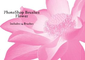 Flower Brushes by Lovegreen13