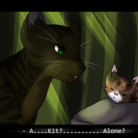 SAT: *A kit all alone?* by Samooraii
