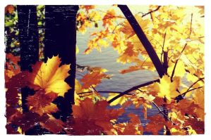 herbst4 by kathuw66