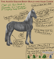 The Audax Equus-Body and Hair by patchesofheaven74
