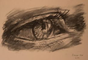 Eye Charcoal by FrostwindHD