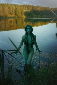 Lady of the Lake  The Witcher Cosplay by elenasamko