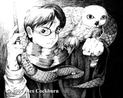 Harry Potter by o-kemono