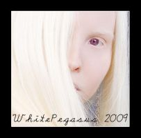 New DA ID of 2009 by NicoleSlaughter